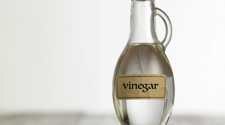 Vinegar to get rid of spiders