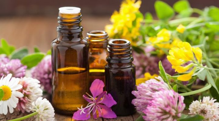 essential oil to get rid of spiders