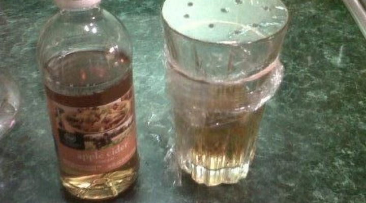 Apple Cider Vinegar Trap for Gnats