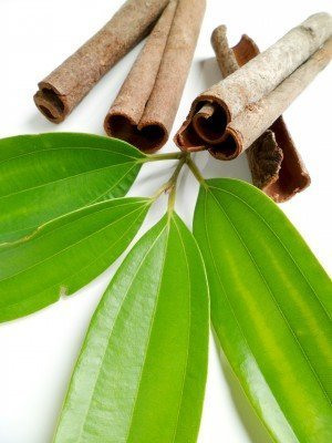 Cinnamon Leaf For Ants
