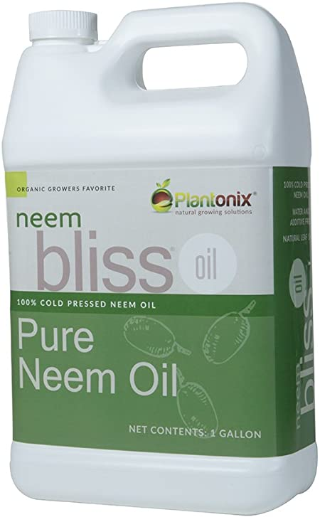 Neem Oil For Ant