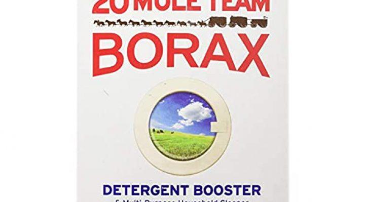 Borax For Bedbugs