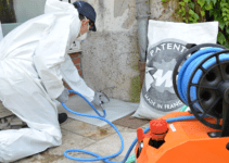 How to Choose the Best Termite Treatment for Your Home and Business